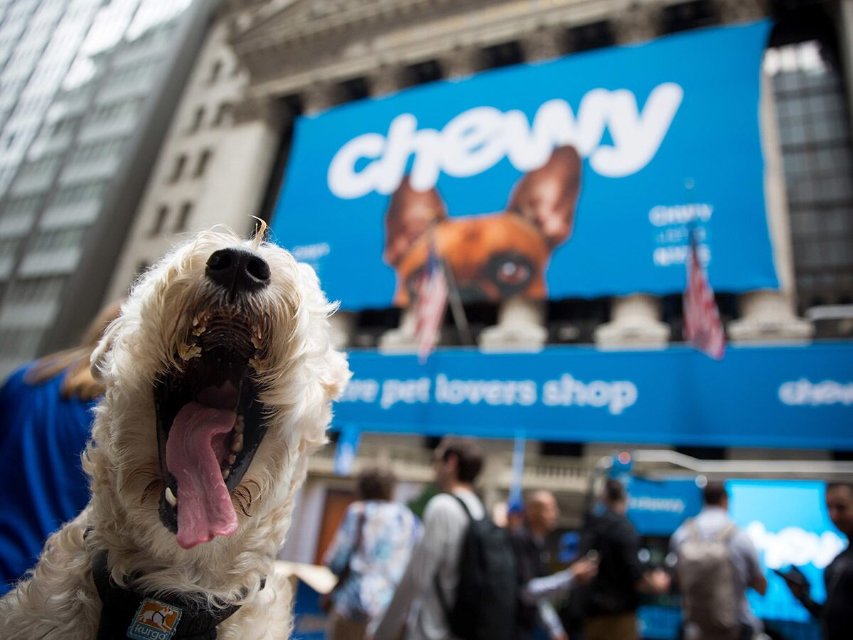Should investors snap up Chewy's share price?