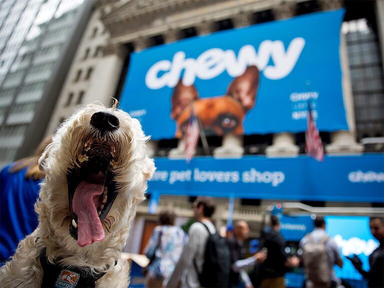 Is Chewy's share price overfed?