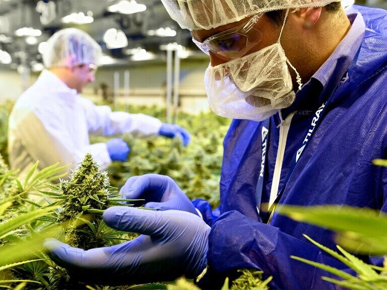 Tilray's stock could still outperform in 2021