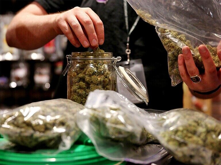 Will Earnings Make Cronos and Canopy Growth's Share Prices Soar?