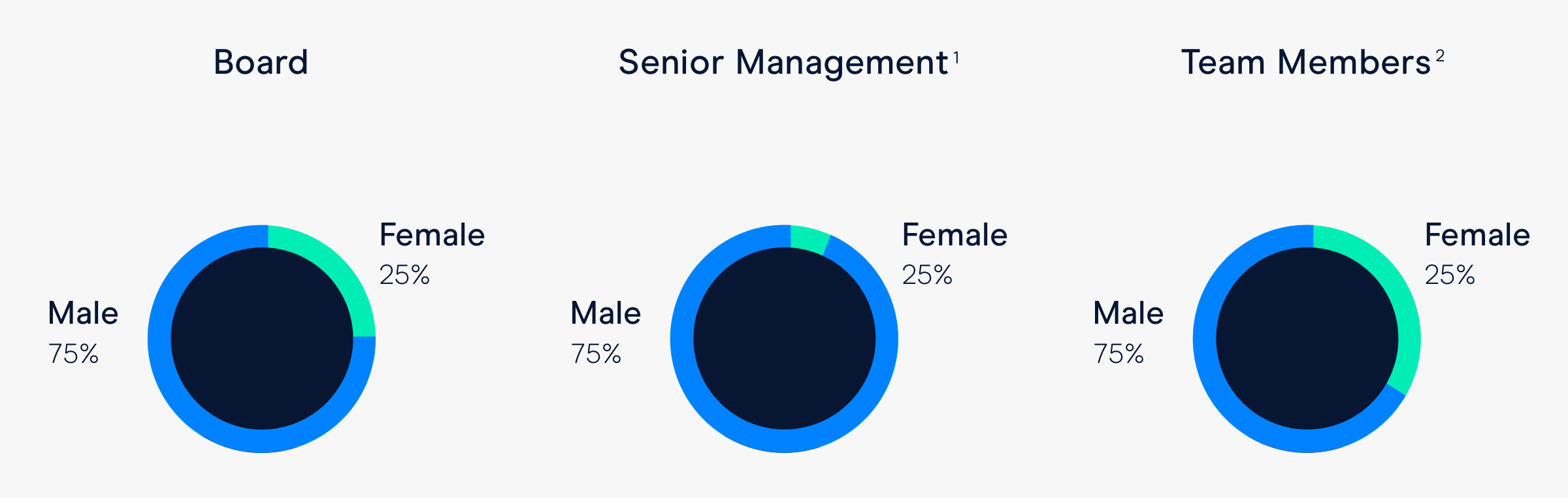 Team Members (2): Male 75%, Female 25%. Board: Male 75%, Female 25%. Senior Management (1): Male 75%, Female 25%